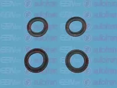 AUTOFREN SEINSA D11150 - Repair Kit, brake master cylinder www.parts5.com