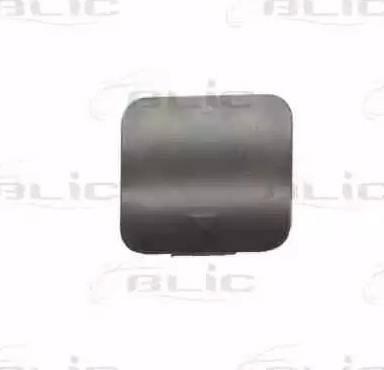 BLIC 5513000075970P - Bumper Cover, towing device www.parts5.com