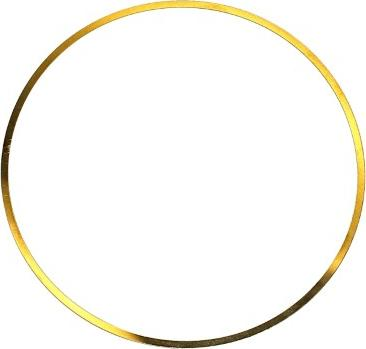 Elring 703214 - O-Ring, cylinder sleeve www.parts5.com