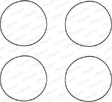 Payen HR564 - O-Ring Set, cylinder sleeve www.parts5.com