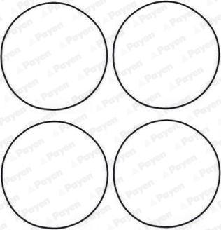 Payen HR566 - O-Ring Set, cylinder sleeve www.parts5.com