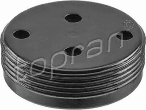 Topran 110878 - Plug, rocker arm shaft mounting bore www.parts5.com